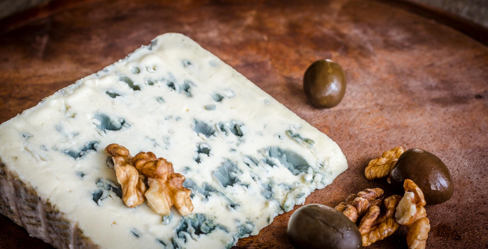 Плесень для сыра в домашних условиях 129